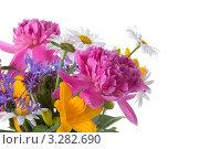 Букет красивых цветов. Стоковое фото, фотограф Елена Блохина / Фотобанк Лори