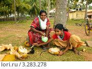 Мать и дочь продают кокосы. Черный пляж, Варкала (2011 год). Редакционное фото, фотограф Кудрявцева Светлана / Фотобанк Лори