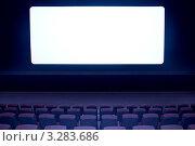 Купить «Белый киноэкран», фото № 3283686, снято 19 апреля 2010 г. (c) Василий Козлов / Фотобанк Лори