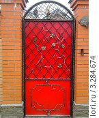Красная калитка с элементами ковки. Стоковое фото, фотограф kraser / Фотобанк Лори