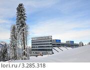 Купить «Строительство совмещенного лыже-биатлонного комплекса для Олимпиады 2014 на плато Псехако, Сочи», фото № 3285318, снято 24 февраля 2012 г. (c) Анна Мартынова / Фотобанк Лори