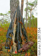 Купить «Оружейная пирамида», фото № 3287554, снято 1 октября 2011 г. (c) макаров виктор / Фотобанк Лори