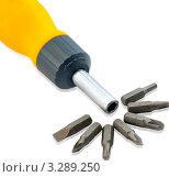 Набор головок для отвертки. Стоковое фото, фотограф Sviatoslav Homiakov / Фотобанк Лори