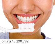 Купить «Белые здоровые зубы и зубная щетка», фото № 3290782, снято 5 февраля 2012 г. (c) Алексей Сергеев / Фотобанк Лори