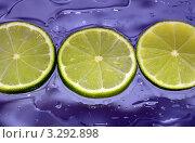 Лайм. Стоковое фото, фотограф Юлия Антофагаста / Фотобанк Лори