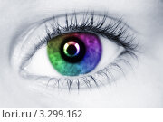 Купить «Левый глаз с разноцветным зрачком», фото № 3299162, снято 16 ноября 2009 г. (c) Losevsky Pavel / Фотобанк Лори