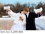 Купить «Жених и невеста целуются в зимнем парке», фото № 3299458, снято 19 февраля 2011 г. (c) Losevsky Pavel / Фотобанк Лори