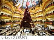 Купить «Новогодняя елка в Galeries Lafayette, Париж, Франция», фото № 3299678, снято 30 декабря 2009 г. (c) Losevsky Pavel / Фотобанк Лори