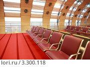 Купить «Интерьер аэропорта - пустые ряды красных кресел», фото № 3300118, снято 5 января 2010 г. (c) Losevsky Pavel / Фотобанк Лори