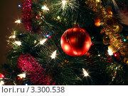 Купить «Новогодняя елка с гирляндой, мишурой и шаром», фото № 3300538, снято 12 января 2011 г. (c) Losevsky Pavel / Фотобанк Лори