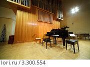 Купить «Черный концертный рояль стоит на пустой сцене рядом с органом», фото № 3300554, снято 26 марта 2019 г. (c) Losevsky Pavel / Фотобанк Лори