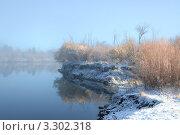 Заснеженный берег реки с рыжими кустами отражается в воде и туман. Стоковое фото, фотограф Ольга Левонович / Фотобанк Лори