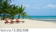 Купить «Тропический пляж с пальмами», фото № 3302938, снято 7 марта 2011 г. (c) Роман Журавлев / Фотобанк Лори