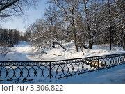 Купить «Зимний парк. Павловск», фото № 3306822, снято 12 февраля 2011 г. (c) Светлана Кудрина / Фотобанк Лори
