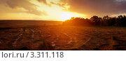Закат над полем со скошенной травой. Стоковое фото, фотограф Мария Калиниченко / Фотобанк Лори