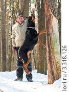 Купить «Мужчина играет со своей собакой в зимнем лесу», фото № 3318126, снято 13 марта 2010 г. (c) Татьяна Макотра / Фотобанк Лори