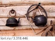 Купить «Натюрморт с чайниками», фото № 3318446, снято 26 июня 2006 г. (c) Василий Козлов / Фотобанк Лори