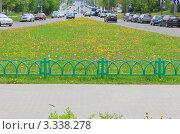 Цветущий разделительный газон в городе (2011 год). Редакционное фото, фотограф UladzimiR / Фотобанк Лори