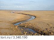 Купить «Ручей в пустыне», фото № 3340190, снято 4 мая 2011 г. (c) Надежда Болотина / Фотобанк Лори