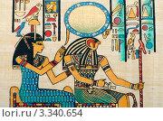 Купить «Фрагмент египетского папируса», фото № 3340654, снято 26 октября 2011 г. (c) Elnur / Фотобанк Лори