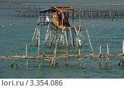 Купить «Хижина рыбаков на сваях на реке в районе города Нячанг во Вьетнаме», фото № 3354086, снято 20 февраля 2011 г. (c) Раппопорт Михаил / Фотобанк Лори