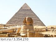 Купить «Сфинкс на фоне пирамиды», фото № 3354210, снято 8 декабря 2019 г. (c) Erwin Wodicka / Фотобанк Лори