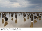 Купить «Добыча соли на озере Баскунчак», фото № 3356510, снято 6 мая 2011 г. (c) Алексей Воронцов / Фотобанк Лори