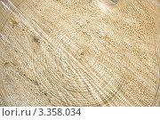 Спил дерева. Стоковое фото, фотограф Сергей Коротич / Фотобанк Лори