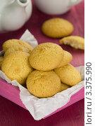 Купить «Кокосовое печенье к чаю», эксклюзивное фото № 3375990, снято 14 февраля 2012 г. (c) Дмитрий Бабанов / Фотобанк Лори