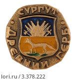 Купить «Значок с изображением герба города Сургута», фото № 3378222, снято 19 марта 2012 г. (c) Грачев Игорь / Фотобанк Лори