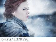 Купить «Зимний портрет красивой молодой девушки», фото № 3378790, снято 25 декабря 2011 г. (c) chaoss / Фотобанк Лори
