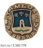 Купить «Значок с изображением герба города Тамбов», фото № 3380778, снято 19 марта 2012 г. (c) Грачев Игорь / Фотобанк Лори