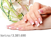 Купить «Женские руки и букет белых роз», фото № 3381690, снято 18 февраля 2020 г. (c) Сергей Дашкевич / Фотобанк Лори