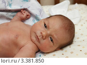 Купить «Младенец в кроватке», эксклюзивное фото № 3381850, снято 4 июля 2011 г. (c) Дмитрий Неумоин / Фотобанк Лори