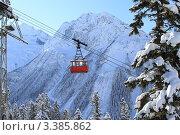 Купить «Домбай. Северный Кавказ», эксклюзивное фото № 3385862, снято 21 января 2012 г. (c) Rekacy / Фотобанк Лори