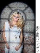 Купить «Портрет красивой девушки стоящей у стены с тенью от окна», фото № 3389466, снято 11 декабря 2011 г. (c) Литвяк Игорь / Фотобанк Лори