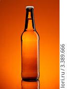 Купить «Бутылка пива», фото № 3389666, снято 28 марта 2012 г. (c) Кравецкий Геннадий / Фотобанк Лори