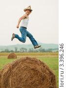 Купить «Фермер  дурачиться», фото № 3396246, снято 31 июля 2011 г. (c) Роман Журавлев / Фотобанк Лори