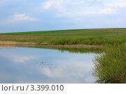 Берег озера и поле на заднем плане. Стоковое фото, фотограф UladzimiR / Фотобанк Лори