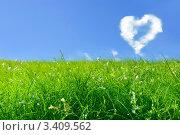 Купить «Облако в виде сердца и зеленое поле», фото № 3409562, снято 21 июля 2006 г. (c) Vesna / Фотобанк Лори