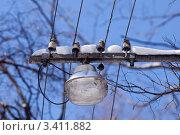 Уличный фонарь в парке. Стоковое фото, фотограф Иван Губанов / Фотобанк Лори