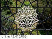 Купить «Фрагмент ажурной решетки моста Путра, Путраджайя, Малайзия», фото № 3415066, снято 5 апреля 2012 г. (c) Светлана Колобова / Фотобанк Лори