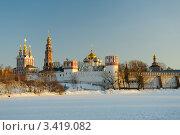 Купить «Новодевичий монастырь зимой», фото № 3419082, снято 6 апреля 2012 г. (c) Денис Ларкин / Фотобанк Лори