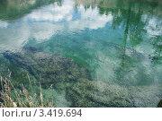 Прозрачная вода в реке. Стоковое фото, фотограф Витинская Светлана / Фотобанк Лори