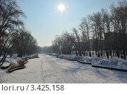 Зимний пейзаж. Стоковое фото, фотограф Ирина Носенко / Фотобанк Лори