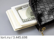 Купить «Пачка долларов в кошельке», фото № 3445698, снято 8 ноября 2011 г. (c) ElenArt / Фотобанк Лори