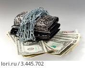 Купить «Кошельки в цепях и деньги», фото № 3445702, снято 8 ноября 2011 г. (c) ElenArt / Фотобанк Лори