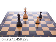 Шахматная доска с фигурами на белом фоне. Стоковое фото, фотограф Карева Олеся / Фотобанк Лори