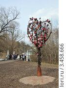 Дерево любви, Кратово (2012 год). Редакционное фото, фотограф Наталия Журова / Фотобанк Лори