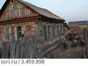 Старый дом на фоне бабушки с козами. Стоковое фото, фотограф Ахметзянов тимур / Фотобанк Лори